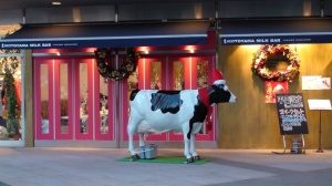 Tokyo's infamous Christmas cows