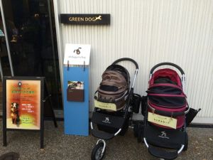 Rental pet strollers parked outside the Green Dog vet, grooming, and treat shop.