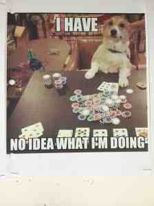 Episode 4: Casino dog!