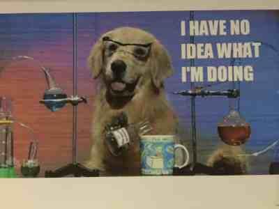 Episode 10: Mad scientist dog!